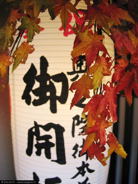 Feuilles d'érables japonais automne en plastique et lampion