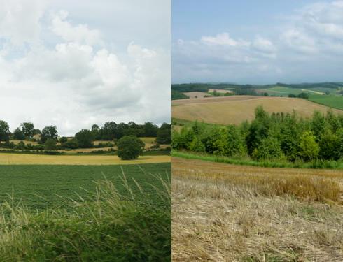 Photo de Charente et d'Hokkaido... mais quelle est la bonne ?