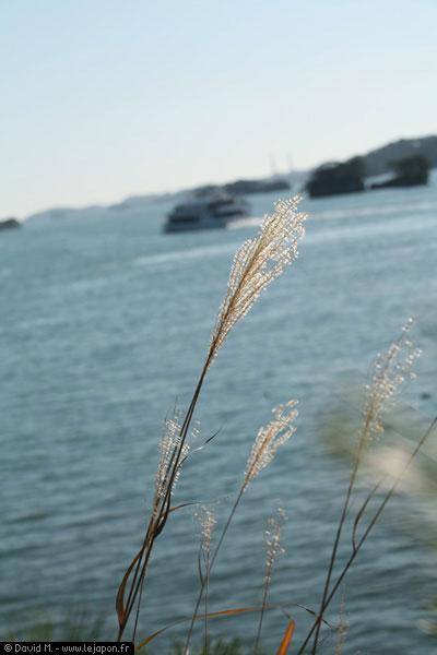 Matsushima Japon