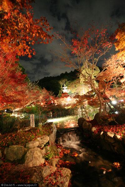 Temple Eikan-do en automne la nuit à Kyoto
