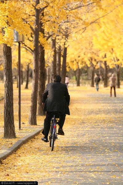 Salaryman sur un vélo en automne à Osaka - Japon