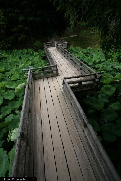 Parc Korakuen Okayama - Japan