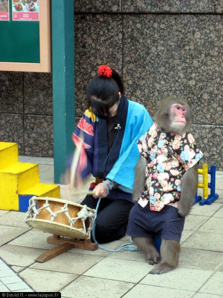 Spectacle de singe au Japon