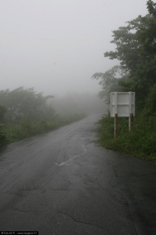 Route dans la brume au Japon