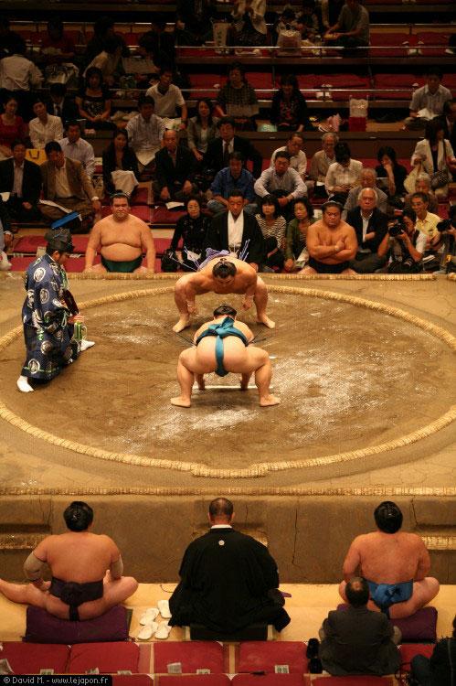Combat de Sumotori au Ryogoku Kokugikan à Tokyo
