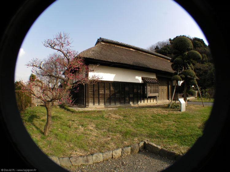 Maison japonaise ancienne préservée avec prunier en fleurs