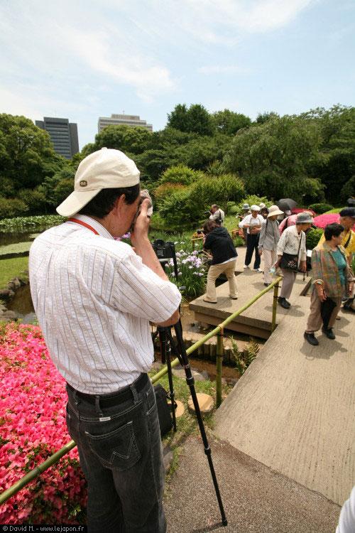 Petit jardin caché du Palais Impérial de Tokyo