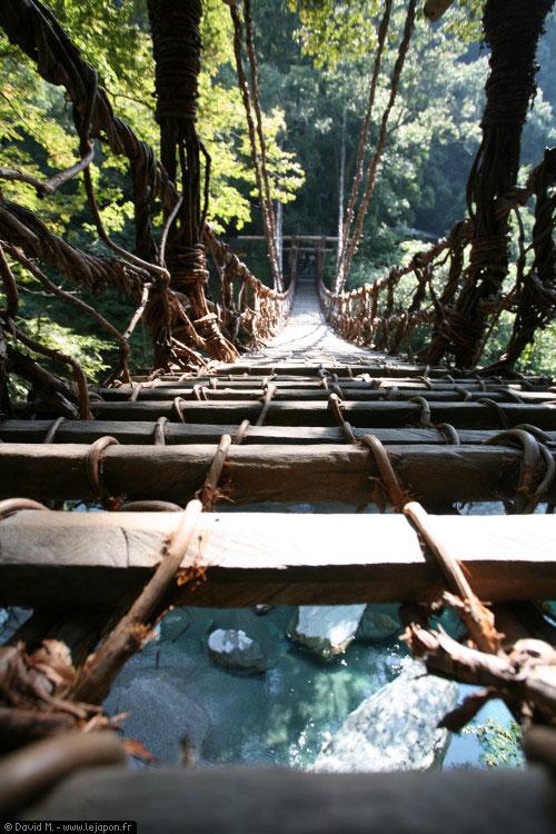 Pont en liane dans la vallée d'Iya