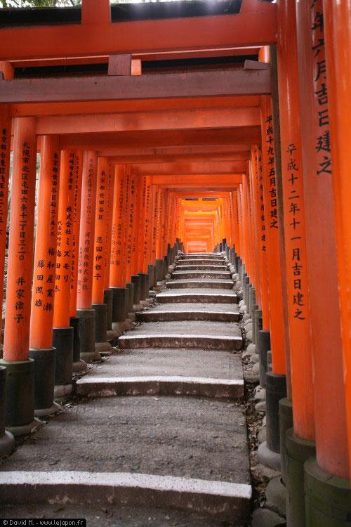 Allée de Torii, portiques rouges, au sanctuaire Fushimi Inari Taisha à Kyoto - japon