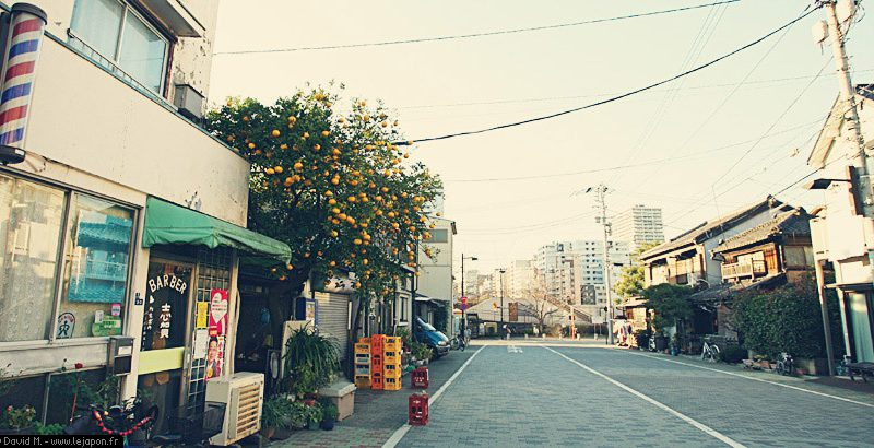 TokyoSafari_004