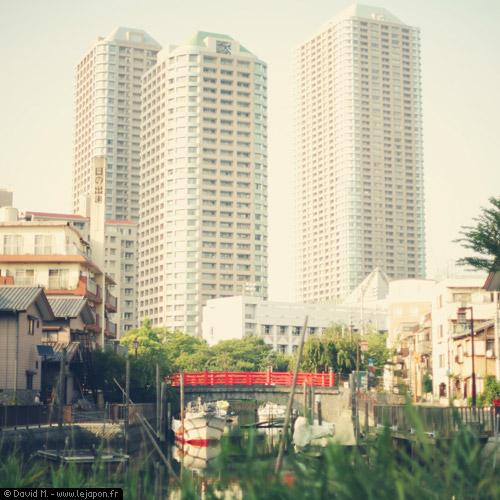 Tokyo Safari - suivez le guide dans la jungle urbaine tokyoïte