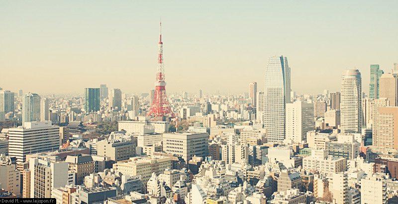 TokyoSafari_025