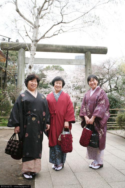 Grand-mère japonaises en kimono avec les Sakuras cerisier en fleurs dans le parc de Ueno à Tokyo