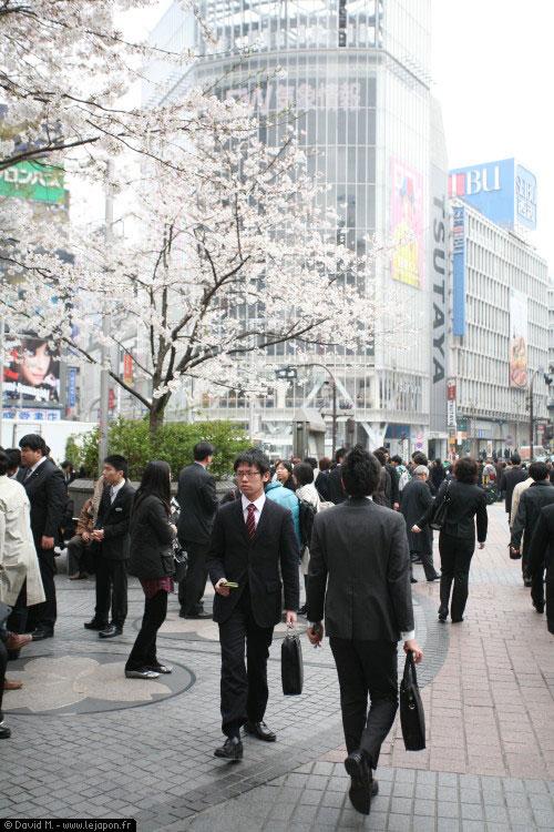 Jeunes étudiants japonais découvrant le monde du travail pour leur stage après l'université
