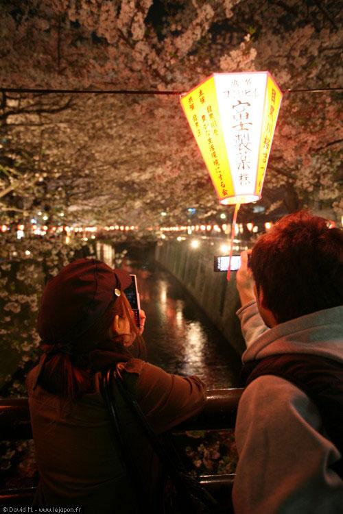 Sakura la nuit à Naka-Meguro / Tokyo / Japon