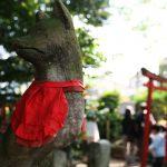 azalea-sanctuaire-nezu-tokyo_IMG_1338