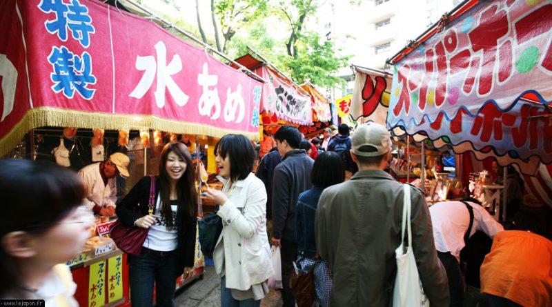 azalea-sanctuaire-nezu-tokyo_IMG_1468