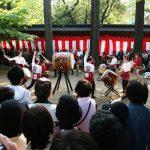 azalea-sanctuaire-nezu-tokyo_IMG_1546