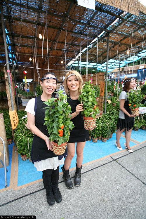 Jeunes japonaises blonde pendant le marché aux physalis au temple Senso-ji d'Asakusa