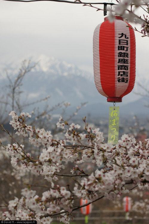 Sakura de montagne à Omachi - Alpes japonaises