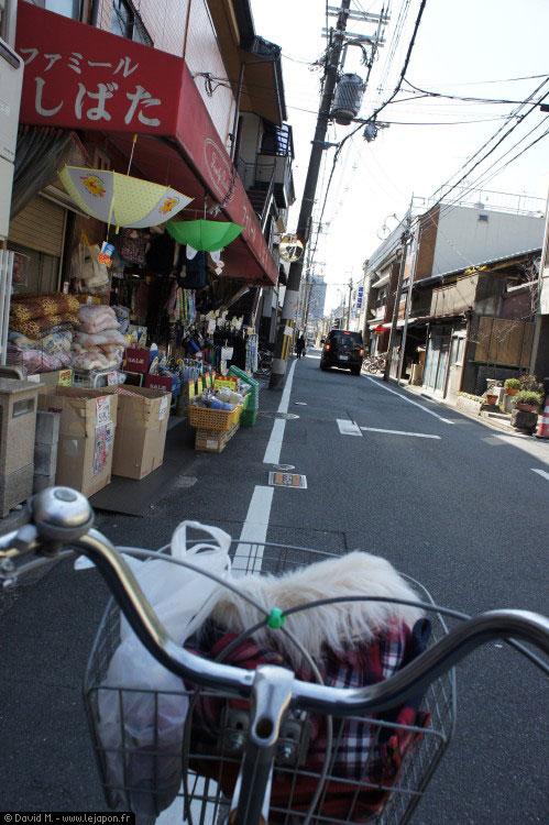 Kyoto à vélo
