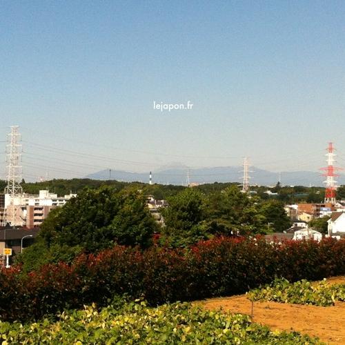 20120717-220622.jpg