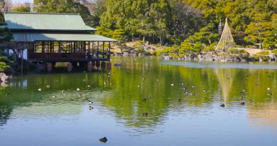 Kiyosumi Koen Garden