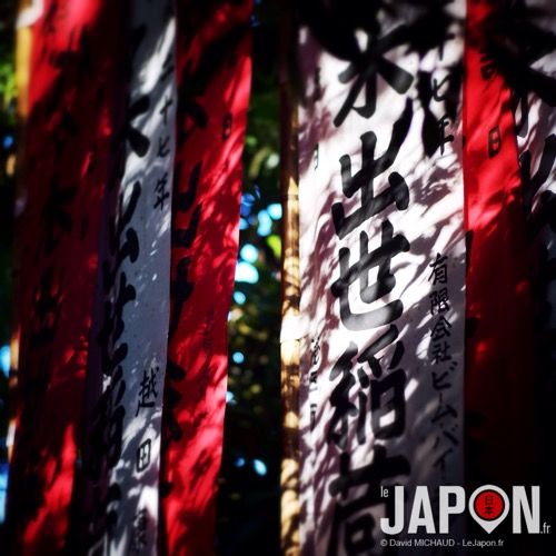 IMG_4781.JPG
