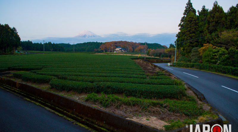 050Fuji-RoadTrip-NIK_4525-lejapon