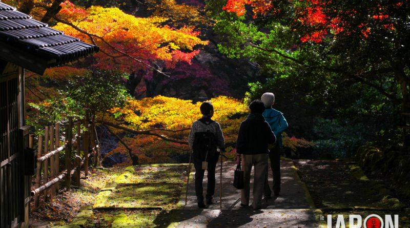 013temple-Gakuen-ji-izumo-IMG_8125-lejapon