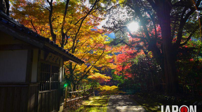 014temple-Gakuen-ji-izumo-NIK_3365-lejapon