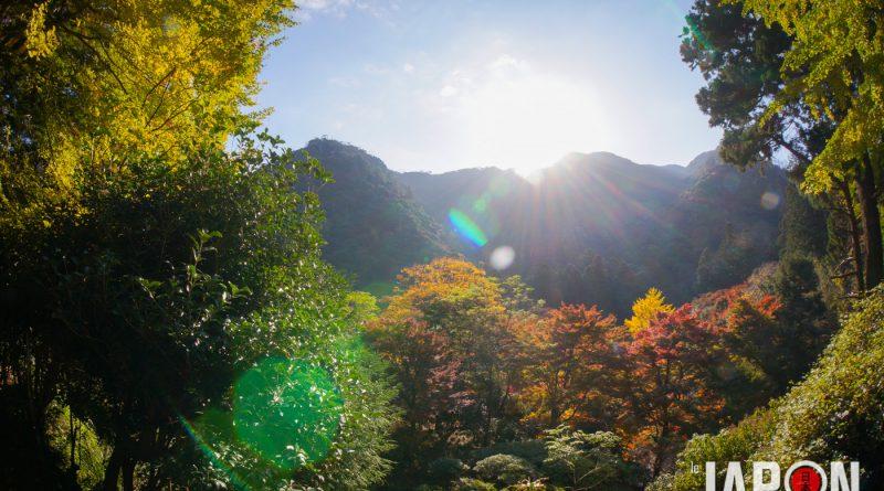 027temple-Gakuen-ji-izumo-DSC03347-lejapon