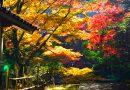 Temple Gakuen-ji à l'automne – Izumo Part I.