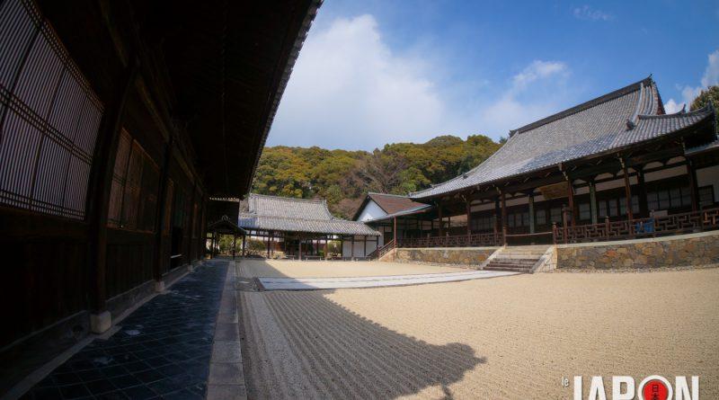 017uji-kyoto-sencha-matcha-DSC07408-lejapon