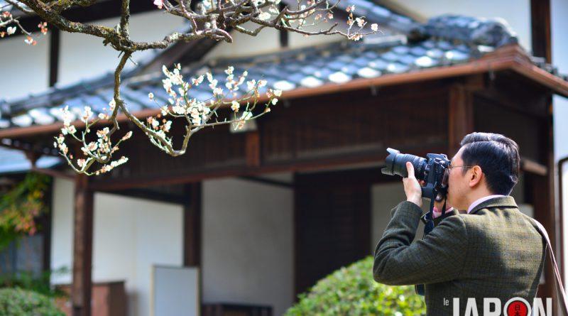 021uji-kyoto-sencha-matcha-NIK_5854-lejapon