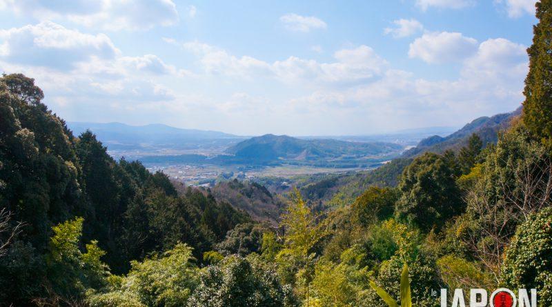048uji-kyoto-sencha-matcha-DSC07596-lejapon