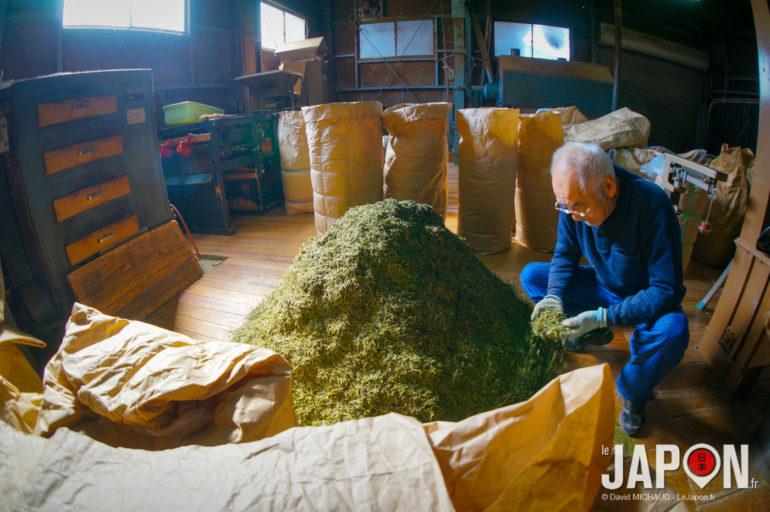 Kamikoma fabricant de thé vert Sencha à Uji - Kyoto