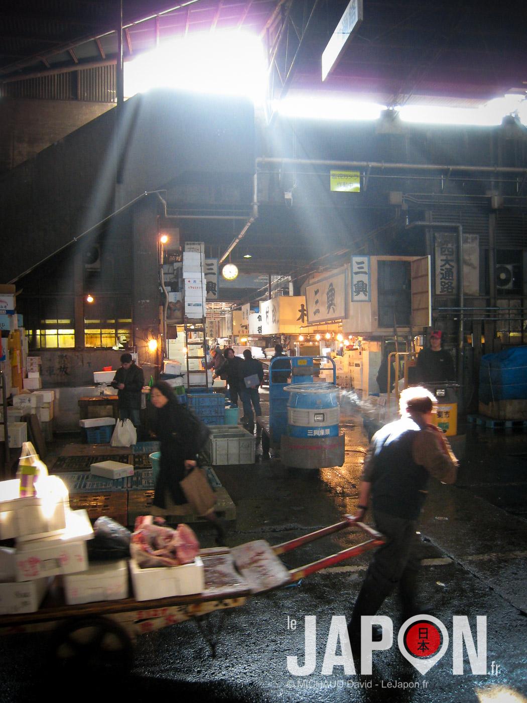 Marché aux poissons de Tsukiji !