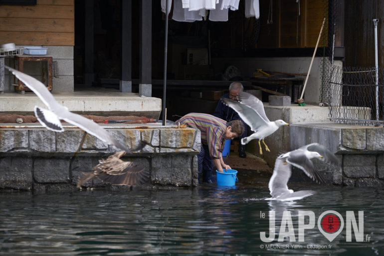 Ine Funaya Yenice Japon