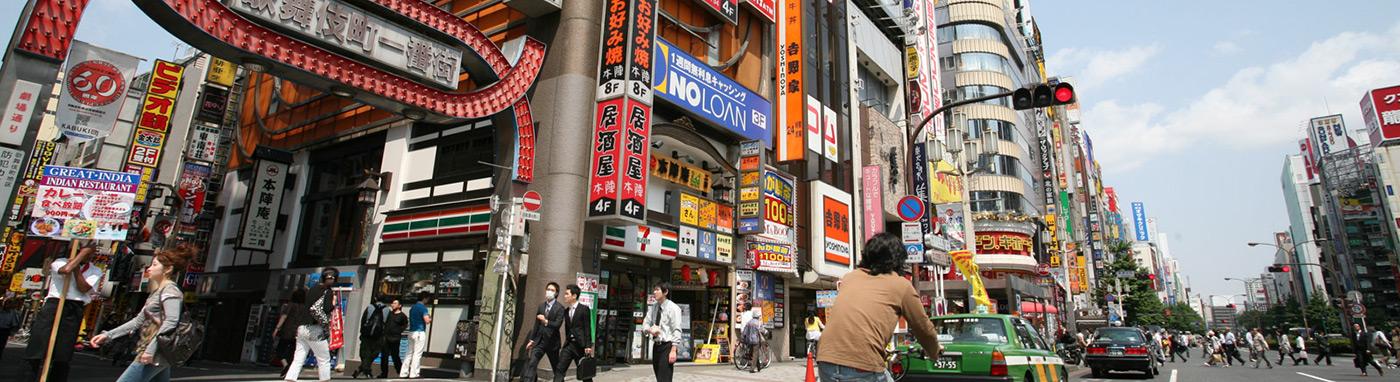 Tokyo Safari : 10 ans de visites hors des sentiers battus !